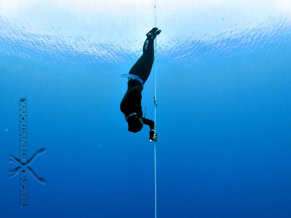 freediving-training-tips