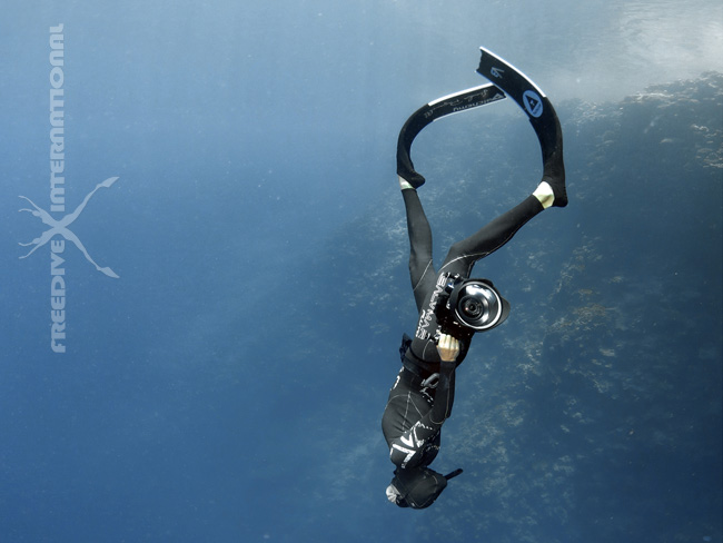 alchemy carbon freediving fins